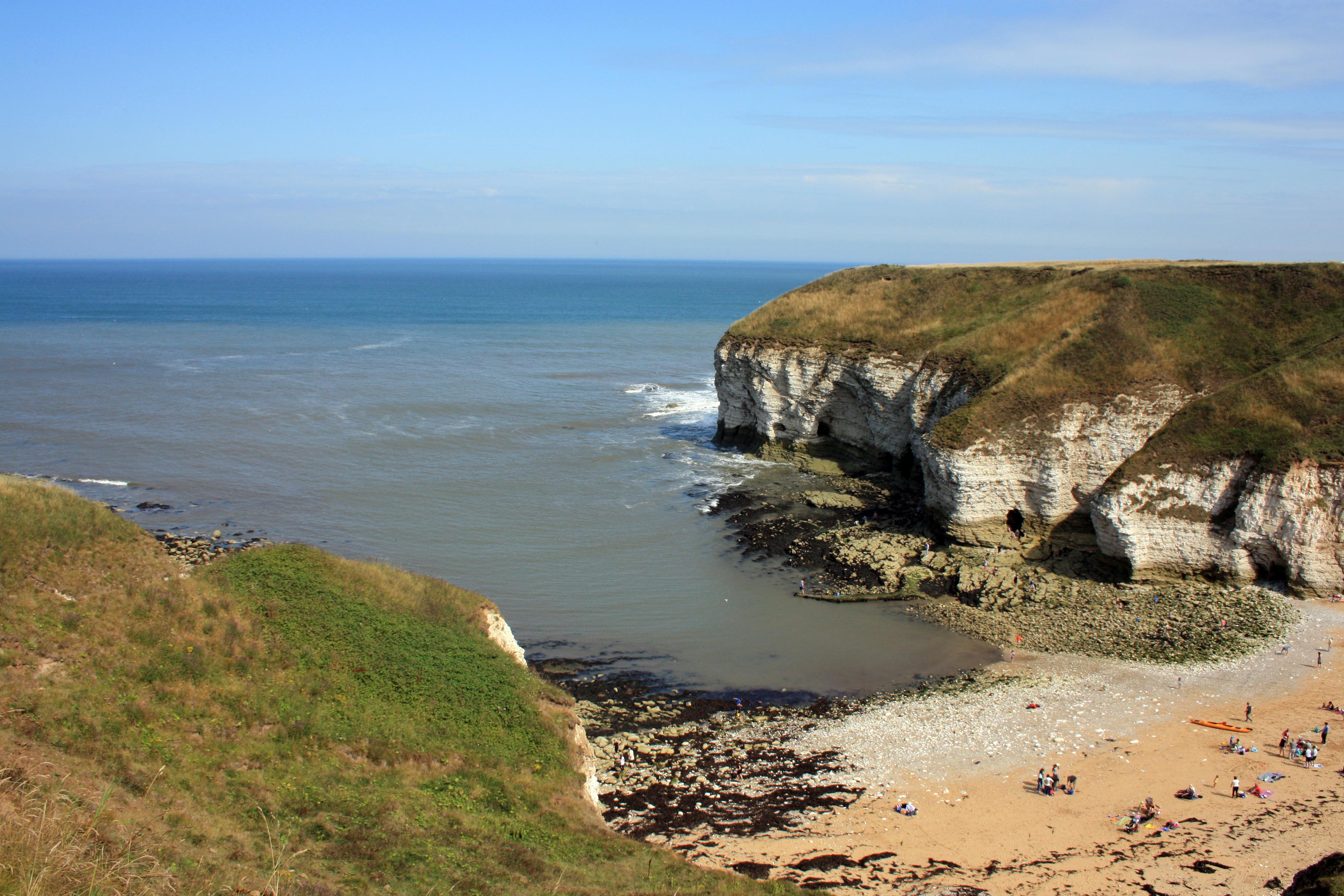 A View From Bempton Cliffs