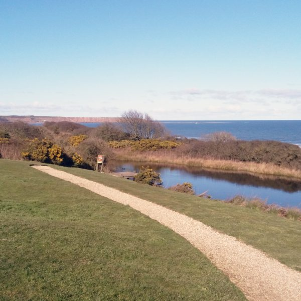 The Bay Filey, Pond & Beach View